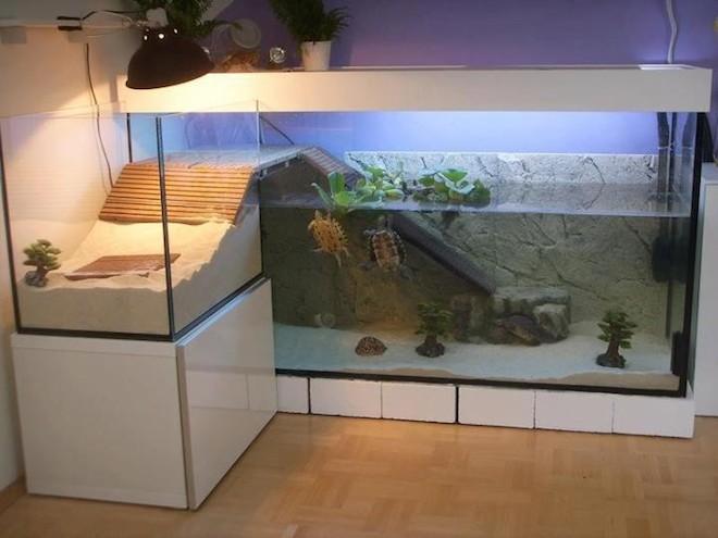 世界のオシャレな水槽を持つ家15