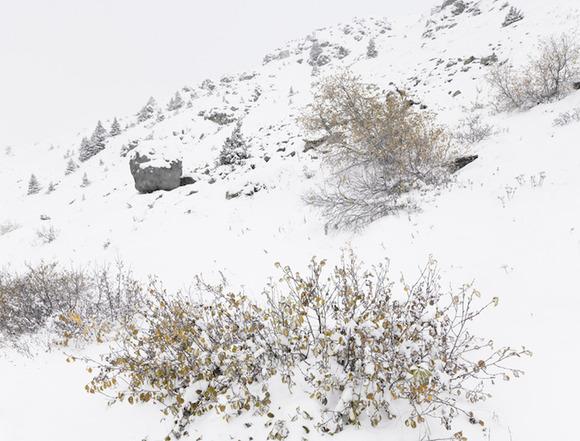 Bureau Aがプロジェクトし制作された岩の形をした山小屋「antoine」5