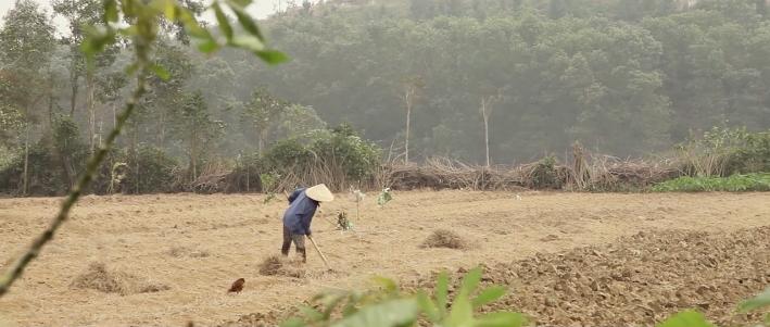 ベトナムの文化や生活をリアルな旅目線で味わえるショートムービー『This Land (Vietnam)』