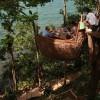 タイで秘密基地気分を味わおう!木の上にあるレストラン「ツリーポッドダイニング」