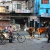 インドで日本人女性がレイプ被害に。改めてインド旅行に行く前に注意すべき6つの項目